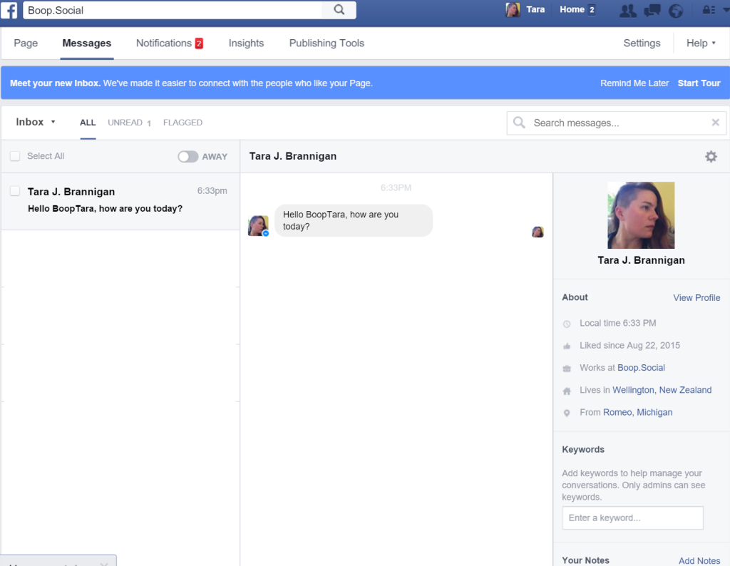 Screenshot of the new Facebook Inbox, illustrating message profile view