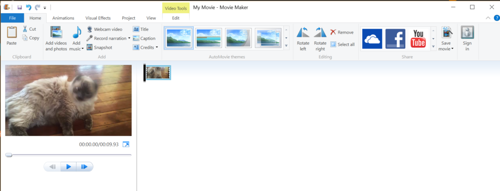 Windows Movie Maker with Boop Cat clip loaded