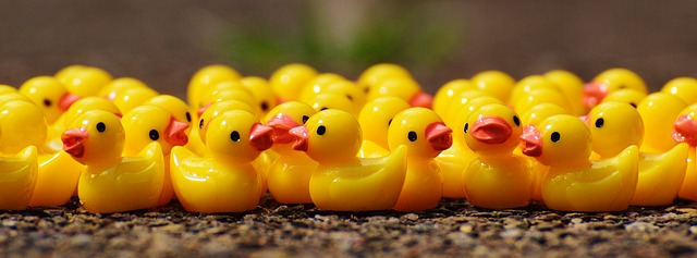 Community Managers as duckies. Because.